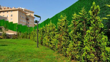 Bahçe Düzenlemesinde Ağaçların Önemi! Çimçit ve Suni Çim Kullanılan Bahçeler!